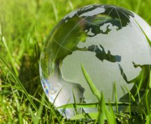15-16 ноября пройдет Всероссийский экологический диктант