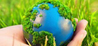 Началась регистрация участников Всероссийского экологического диктанта