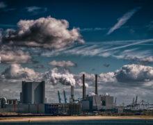 Группа «Мумий Тролль» выпустила музыкальный клип на экологическую тему