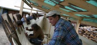 В Архангельске за две недели построят поморский карбас