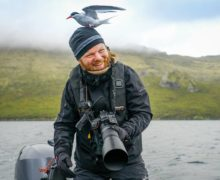 Пингвины, медведи и океан: арктические и антарктические гиды о работе мечты