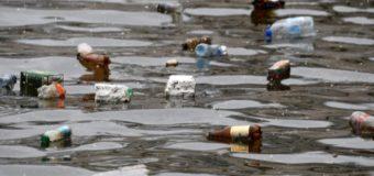 Доля пластика в отходах Балтики достигает 60%