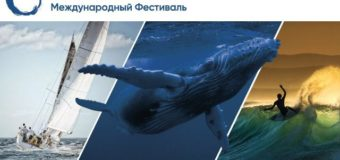 OCEAN-TV стал партнёром фестиваля «The Big Ocean Show»